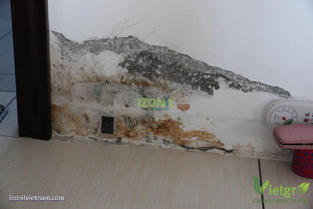 chống thấm tường trong bị ẩm mốc